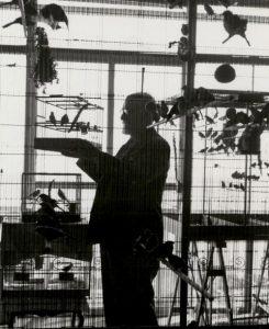 Henri Matisse à Nice, c. 1943 /Roger SCHALL /sc